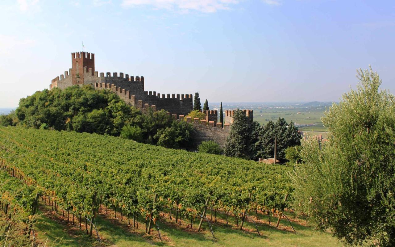 Castello di Soave Verona - degustazione vini