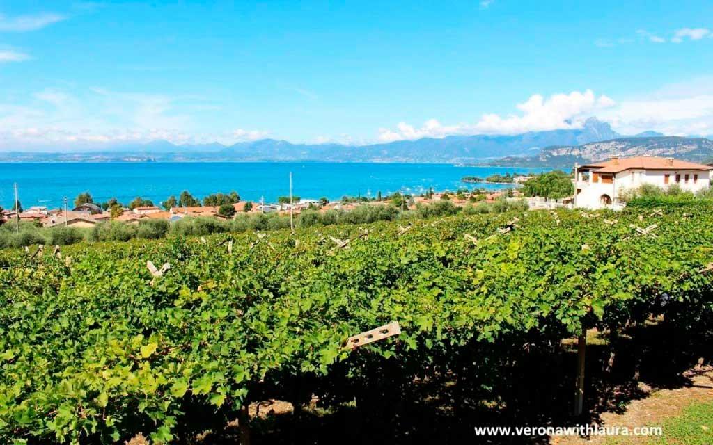 tour enogastronomici lago di Garda